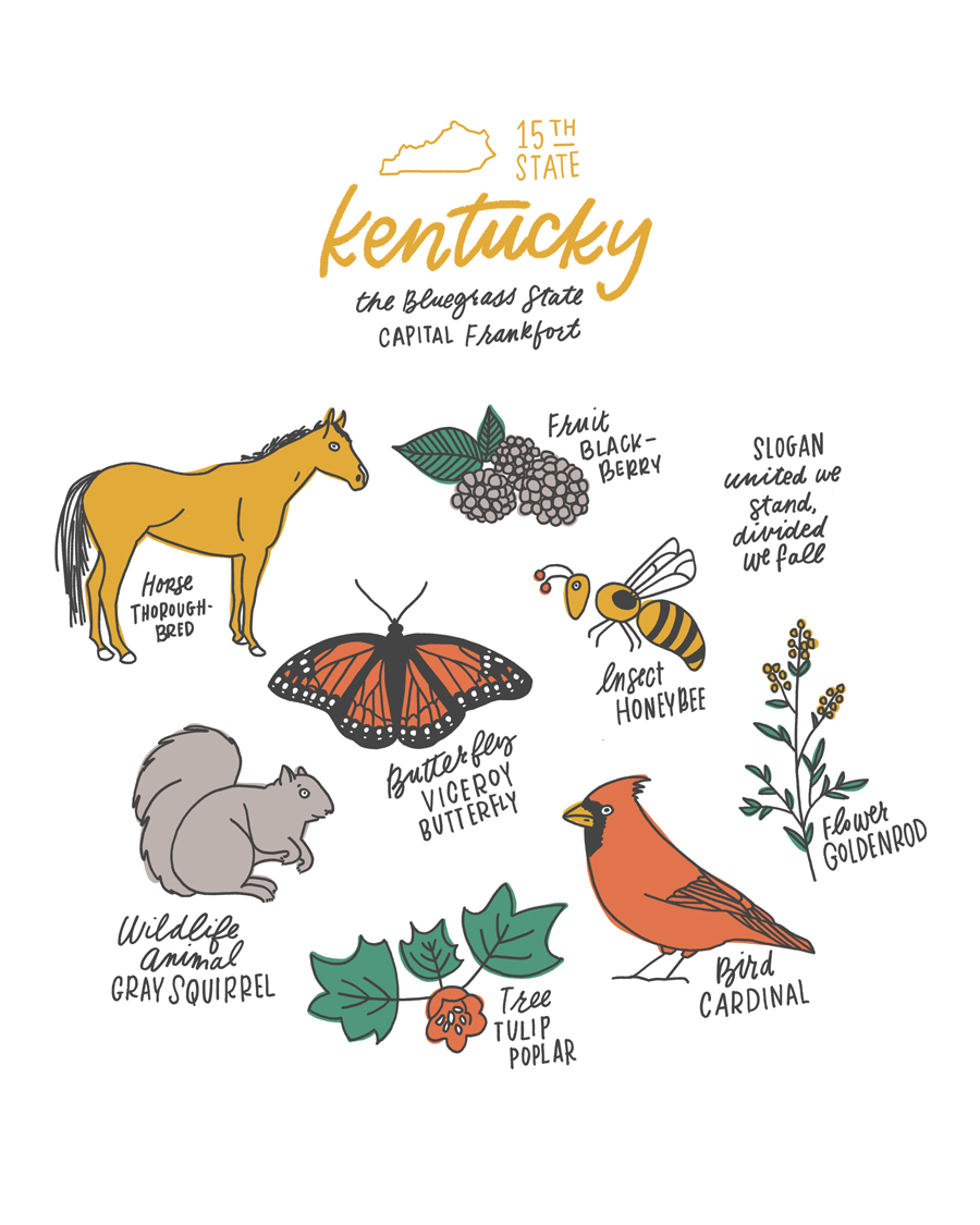 Kentucky State Symbols Art Print by Joanna Dee