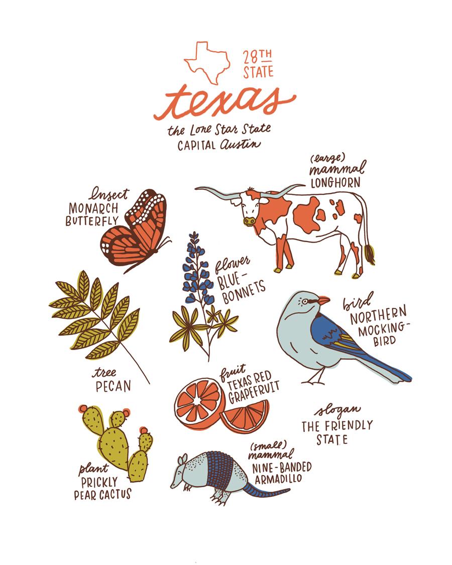 Texas State Symbols Art Print